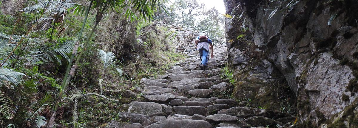 Inca Trail Treppe