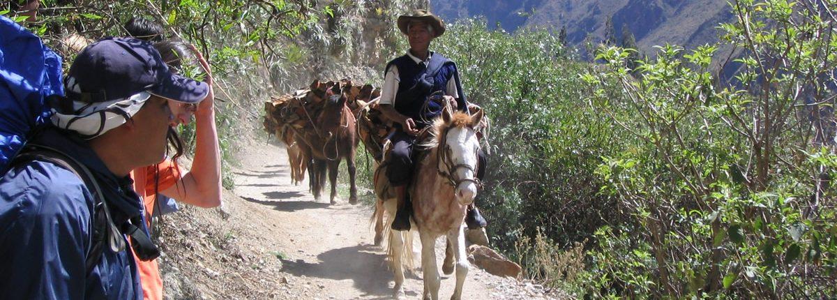 Inka Trail per Pferd