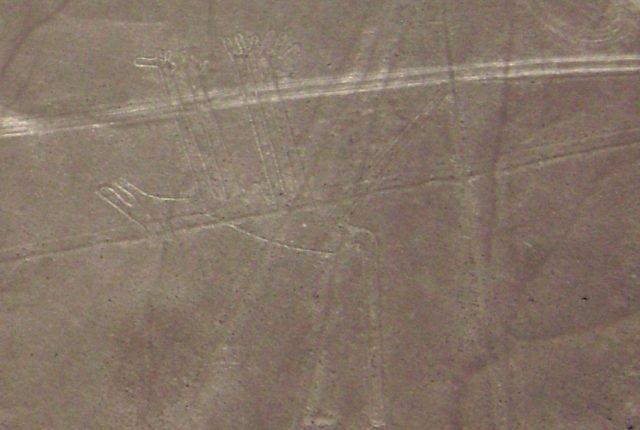 Nazca Linien Hund