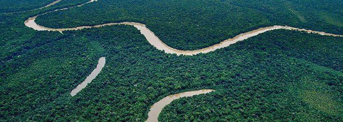 Blick auf das Reservat Yaguas in Loreto