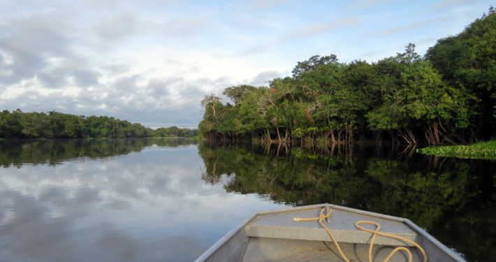 Der Amazonas in Peru