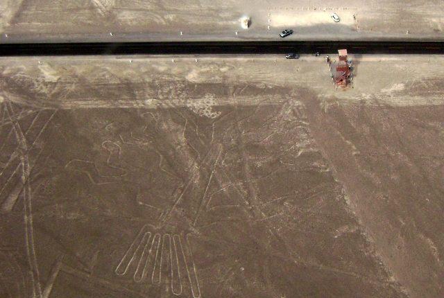 Nazca Linien Baum