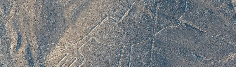 Nazca Linien Vogel