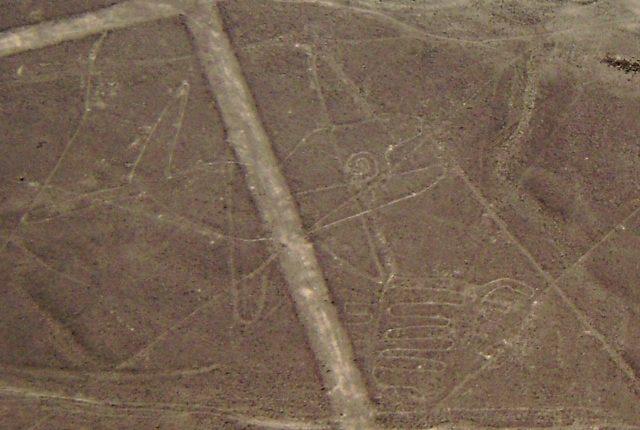 Nazca Linien Wal
