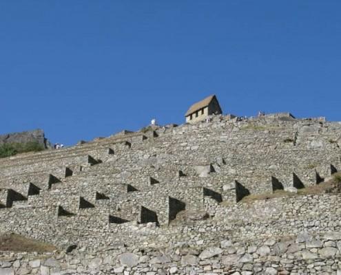 Wachposten in Machu Picchu