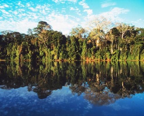 Lebensraum der Amazonas Indianer