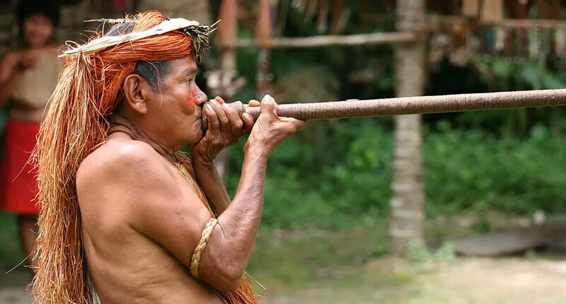 Yahua Blowgun Amazon Iquitos Peru