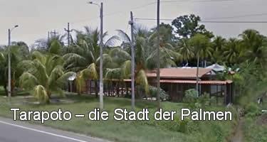Tarapoto die Stadt der Palmen