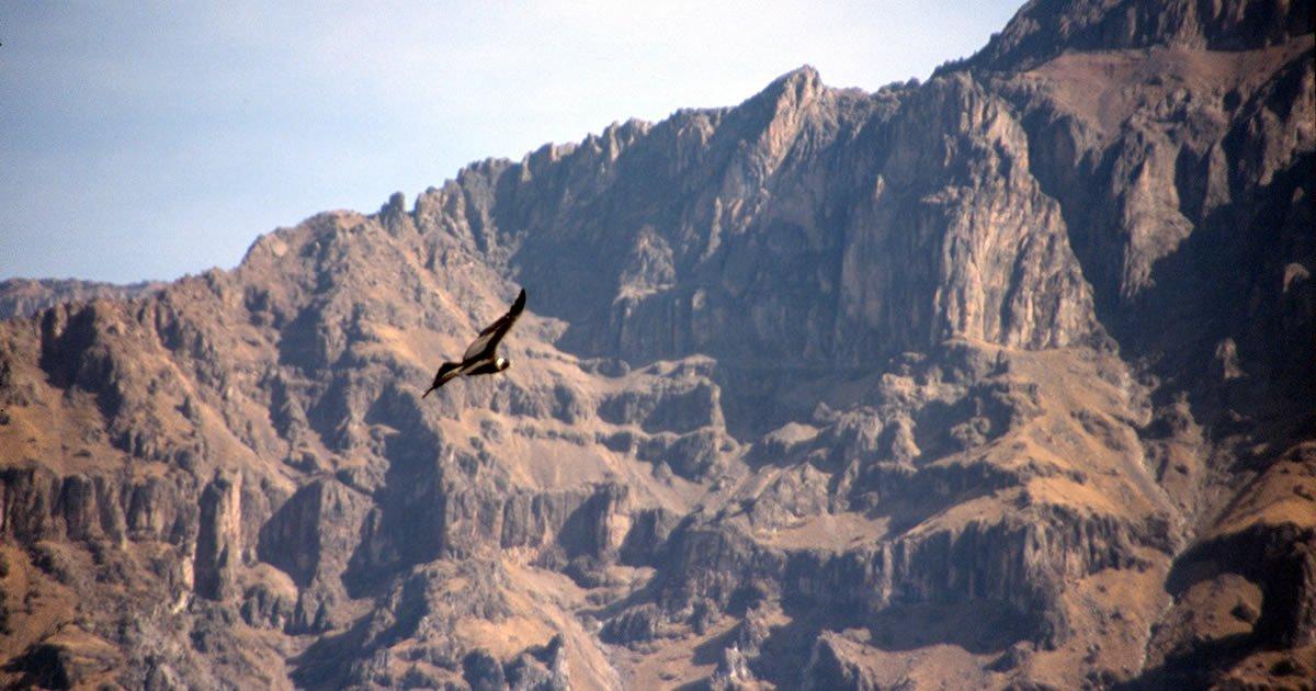 Der Cañón del Colca – der Colca Canyon