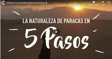 Videos Peru Paracas
