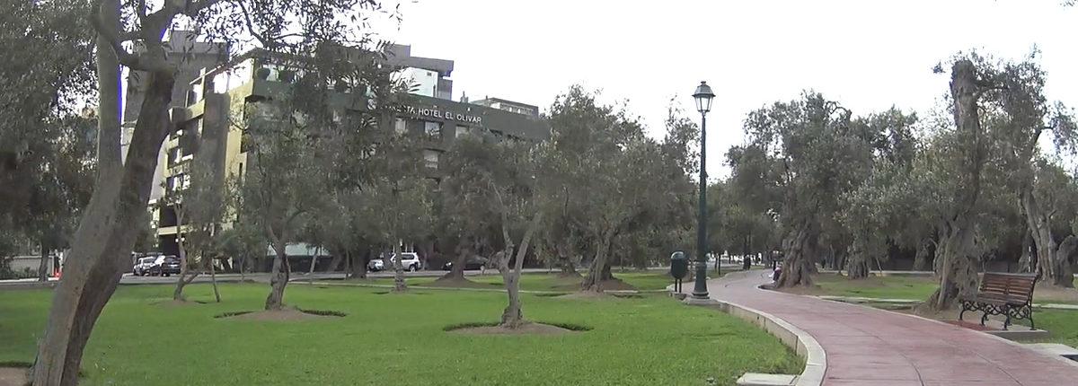 el Olivar San Isidro