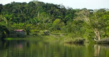 Amazonas-Dschungel-Tour