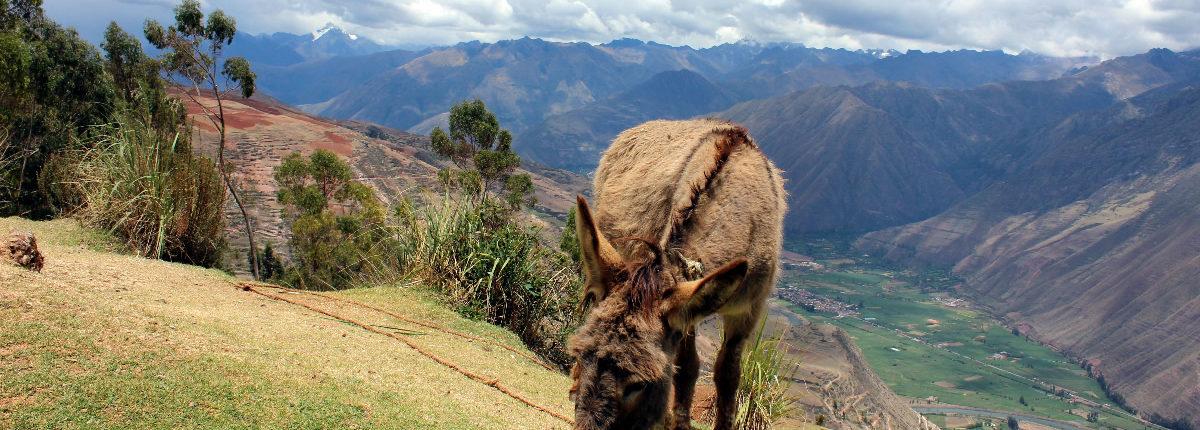 Peru Clásico - die klassische Rundreise Urubamba-Tal
