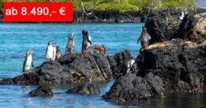 Reiseangebot Abwechslungsreiche Suedamerika-Reise Von Galapagos nach Machu Picchu