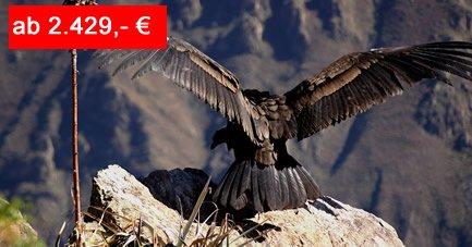 Studienreise: Peru – Reise durch das Land des Kondors