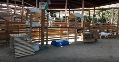 Tiere in La Granja Villa