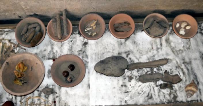 Museo de los Colli