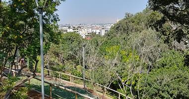 Parque Loma Armarillia