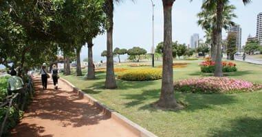Miraflores Park