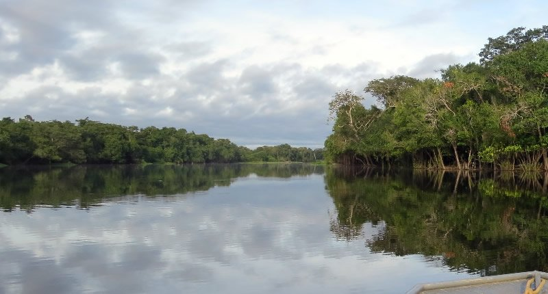 Der Amazonas in Perus Norden