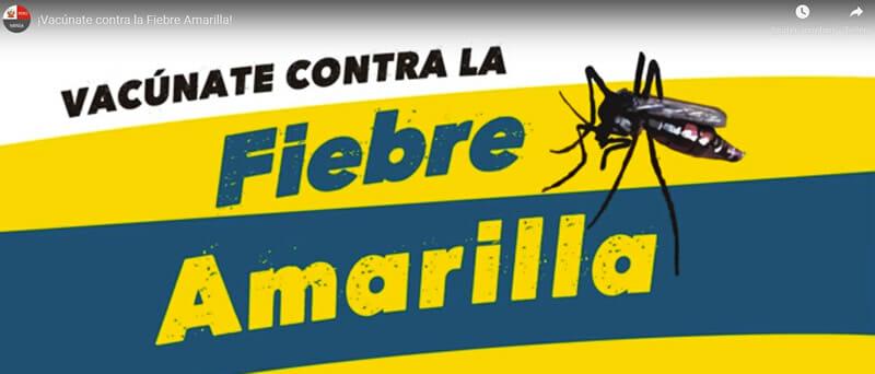 Videos zum Schutz gegen Gelbfieber