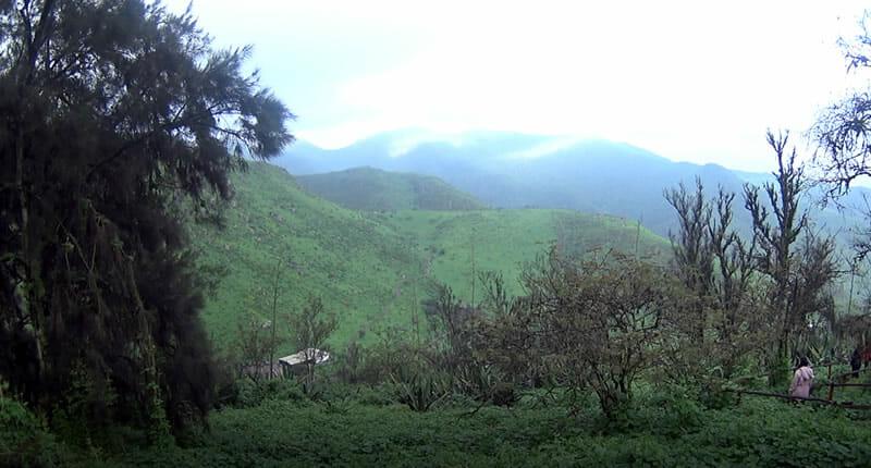 Nationalpark Lomas de Lachay
