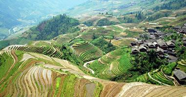 Optimale Nutzung in der Landwirtschaft